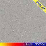 Azulejo esmaltado diseño de la porcelana del cemento del material de construcción 600X600 (WR-IMD2651)