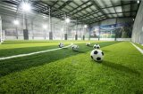 スポーツは、フットボールの草、サッカーの草、プラスチック草草でおおう