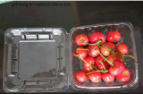 Freies Plastic PET Packing Box für Fruit/Vegetable (Plastic Tray)