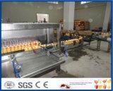 fogão de pulverização e esterilização do túnel
