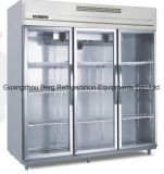 Congelador ereto comercial da porta do aço inoxidável 2