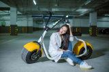 Motorino elettrico del ciclomotore della motocicletta 60V della Cina della batteria del motorino elettrico poco costoso del pedale