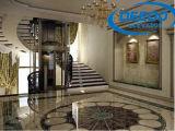 Elevatore economico della villa di Roomless della macchina sicura a basso rumore della stanza della macchina