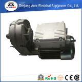 Mischer des einphasig-hohe LeistungsfähigkeitElectromotor Wechselstrom-umschaltbarer Gang-Motor220v