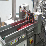 Alta Packaging Machine velocidad Rotary doble bolsa (RZ8-150S)