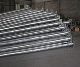 高品質の鋼鉄Q235によって電流を通される街灯ポーランド人