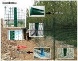 Europ Fence-Holland Iron Wire Mesh / PVC malha soldada