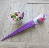 単一の枝三角のロゼットボックス花屋のギフトの花ボックス