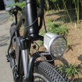 bici eléctrica de la montaña media de la batería 250W (RSEB-401)