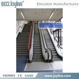Joylive utilizó la escalera móvil del pasajero