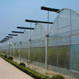 Парник земледелия полиэтиленовой пленки пяди горячего сбывания Multi