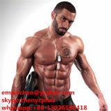 تستوسترون [أستت] لأنّ عضلة يبني 1045-69-8 [سإكس هورمون] ذكريّ