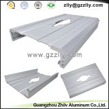 Protuberancia de aluminio/disipador de calor de aluminio para el coche