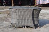 Muebles vivos al aire libre de la silla de vector del balcón del patio de la cubierta de la yarda del jardín (J268)