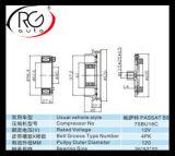 Frizione automatica del compressore del A/C per Passat B5