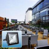 内腔のBridgeluxの高い穂軸屋外の防水IP65 100W LEDのフラッドライト