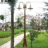 Luz solar competitiva del jardín del precio 60W con alta calidad