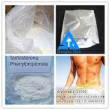 Testoterone Phenylpropionate del rifornimento della fabbrica degli steroidi dell'ormone per i Bodybuilders