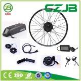 Czjb 36V bon marché moteur électrique de pivot de bicyclette d'arrière de frein à disque de 250 watts