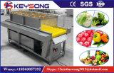 Промышленное Vegetable моющее машинаа плодоовощ