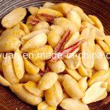 Würziges Aroma gebratene Erdnüsse en gros