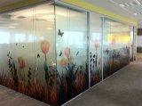 Pellicola e grafici della finestra di colore completo della decorazione dell'ufficio di Custom Company