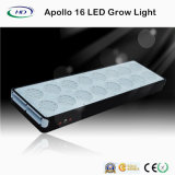 Apolo 16 de alta potencia Full Spectrum LED crecer luz