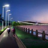 Chine Lampes de jardin solaires en acier inoxydable de 3 m Lampes de rue Soalr Fabricant