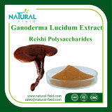 Ganoderma Lucidum / Ganoderma Extracto / Ganoderma Lucidum Bulk Powder