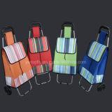 Überzug-Rahmen der Laufkatze u. des Gepäcks mit nähender Farbe