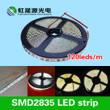 C.C 12V/24V flexible de la bande 120LEDs/M d'éclairage LED de la qualité SMD2835