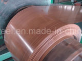 熱い販売カラーはアフリカで鋼板のPrepainted電流を通された鋼鉄コイルに塗った