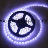 Luz de tira do diodo emissor de luz do preço de grosso Epistar/Samsung 5630