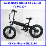 Bike 20 дюймов тучный электрический карманный с спрятанной батареей