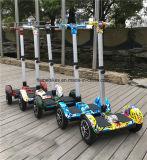elektrischer treibender Roller 700W mit Griff