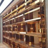 새로운 디자인 호화스러운 스테인리스 홈 가구 강철 전시 텔레비젼 내각 벽 진열장