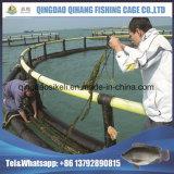 適用範囲が広いNeritic新しいHDPEは海洋の栽培漁業装置を配管する
