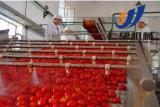 機械トマトのプロセス用機器、トマトの木を作るトマト・ジュース