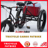 La grasa tándem de la bici por carretera Fatbike neumático de la bici de grasa con dos asientos