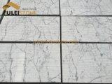 Weiße Marmorwand-Kunst Italien-Statuario, die Fliese schnitzt