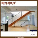 Декоративные Balusters нержавеющей стали для Railing лестницы (SJ-S331)
