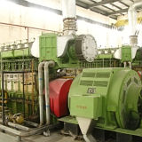 Pianta 1.6mw (2X800KW) Hfo/centrale elettrica di Hfo Powe doppia diesel del combustibile