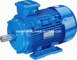 Ie2 Induction Electrical Motor (IP55 Tefc YE2 80-355)