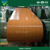 Material de construção para o fabricante de PPGI