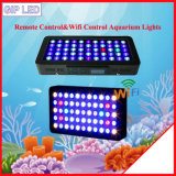 Indicatori luminosi cinesi dell'acquario di controllo 120W 165W 330W LED di Remote&WiFi