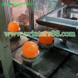 Machine d'impression de Tampo de couleur de la bille 8 de PVC