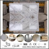 Matériau de construction de marbre blanc d'Arabescato Venato pour le plancher de construction/décoration de maçonnage