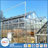 HandelsVenlo Typ Rinne-Verbundenes landwirtschaftliches Gewächshaus für Pflanzengemüse