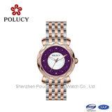 Professioaml 스위스어는 시계 부속 공급자 숙녀 시계를 만들었다