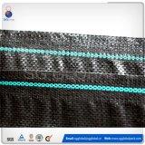 tela plana tejida PP negra 70GSM en venta